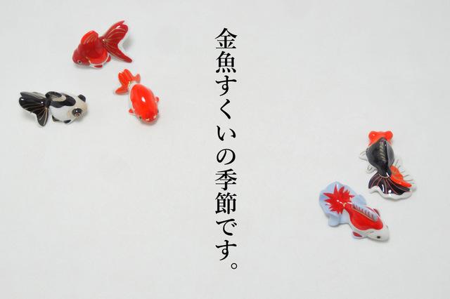 DSC04602mc2.jpg