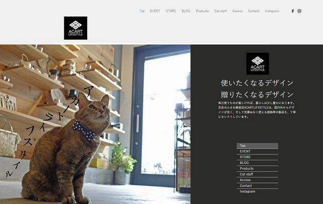 website1.bmp.jpg